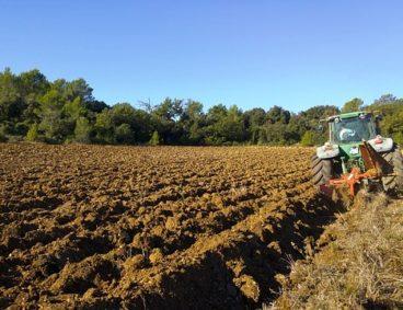 La importancia del análisis de suelos agrícolas
