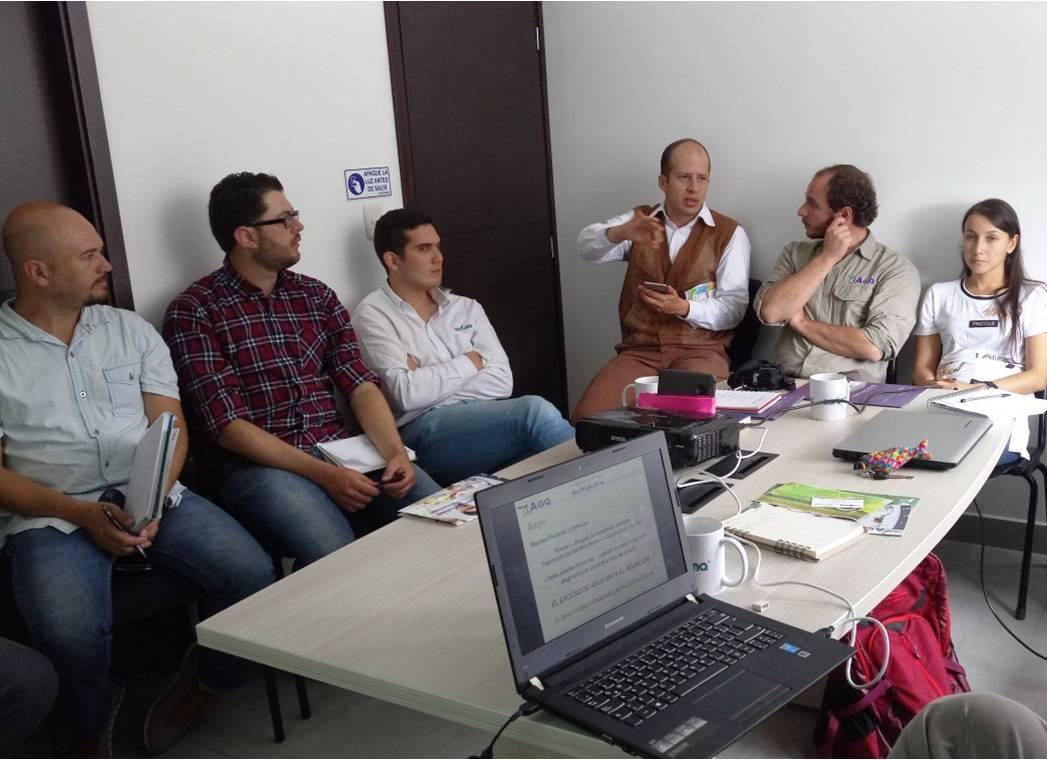 cultivo de aguacate en Colombia