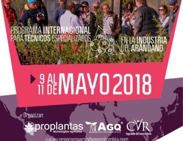 El Programa de Arándanos de Colombia se centrará en la exportación